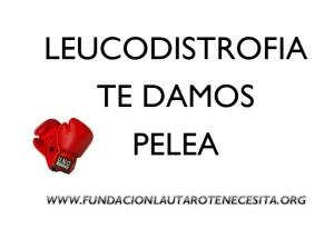 Leucodistrofia